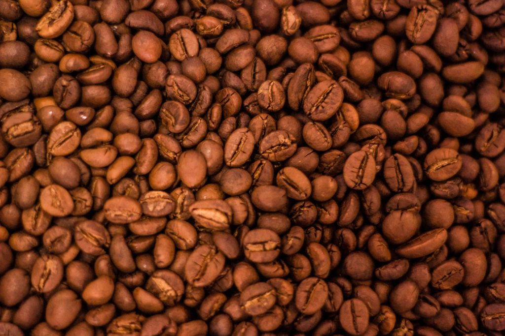 Coffee beans at City roast level
